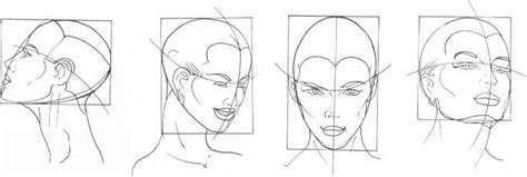 mouth analysis  structure figure drawing martel