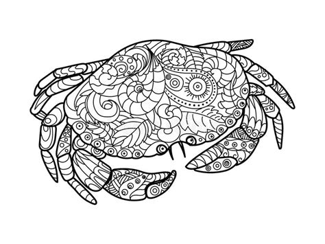 z coloring book for and adults 40 illustrations books crab coloring book for adults vector stock vector image