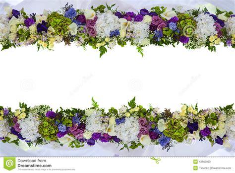 imagenes de flores naturales gratis marco hermoso para una tarjeta de las flores naturales