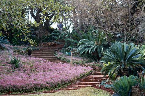 Botanical Gardens Pretoria Pretoria Check Out Pretoria Cntravel