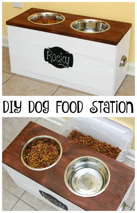 house food for dogs dog food station