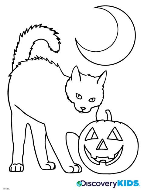 coloring pages black cats for halloween halloween cat coloring page discovery kids