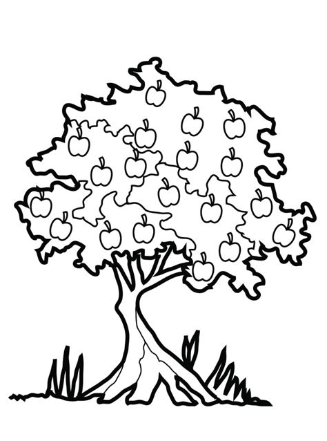 Apple Tree Pictures To Color Az Coloring Pages Apple Tree Coloring Pages