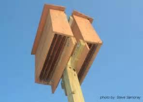 Bat Houses Plans The Benefit Of Bats In The Landscape