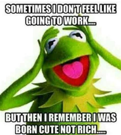 Long Weekend Meme - best 20 long weekend meme ideas on pinterest long