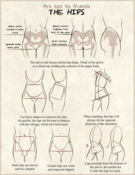 doodle drawing tips anatomy