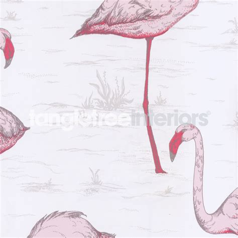 pink flamingo wallpaper uk cole and son flamingo wallpaper wallpapersafari