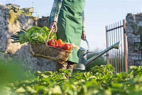 seit wann gibt es italien bio produkte stanislawski laas rewe center in winterhude