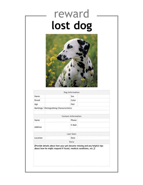 lost pet flyer template stackerx info