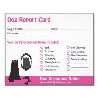 pet report card template groomer flyers programs zazzle