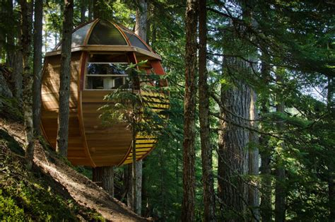 look at these amazing tree houses pictures do not you these are the most amazing tree houses ever