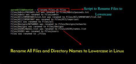 file name pattern linux rename all files and directory names to lowercase in linux