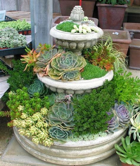 Cactus Planter Ideas by Cactus Succulent Gardening Cubit C S Container Designs