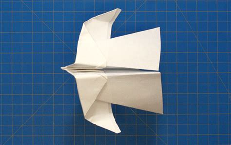 How To Make A Paper Stunt Plane - 16 best paper airplane designs