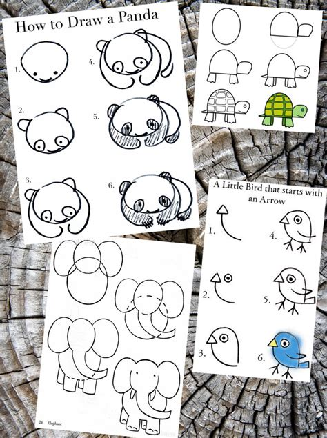 how to draw animals how to draw animals