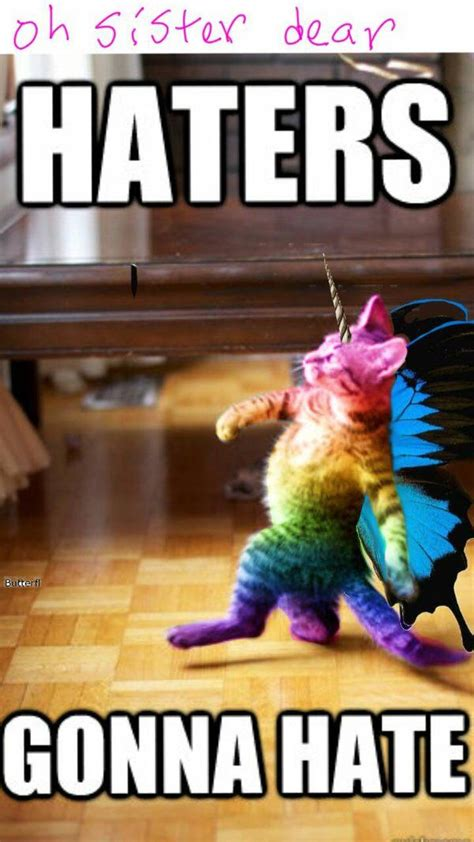 Unicorn Rainbow Meme - rainbow butterfly kitty showing gallery for rainbow