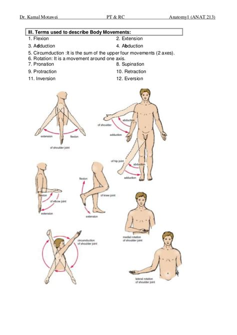 Terms Of Movement Anatomy