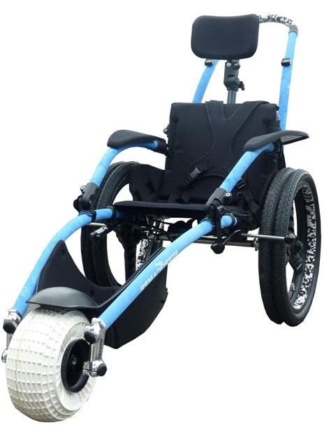 Handicap Chair - delichon hippo about the hippoce wheelchair