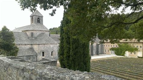 provence panorama day tours avignon france hours avignon wine tours france top tips before you go