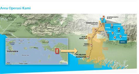 pt freeport indonesia tentang