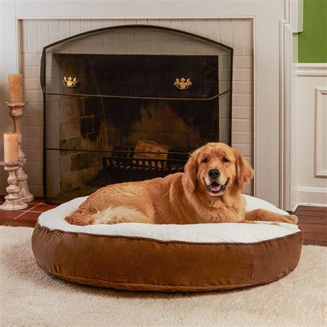 best dog beds for large dogs the best large dog beds for big breeds or doggy families