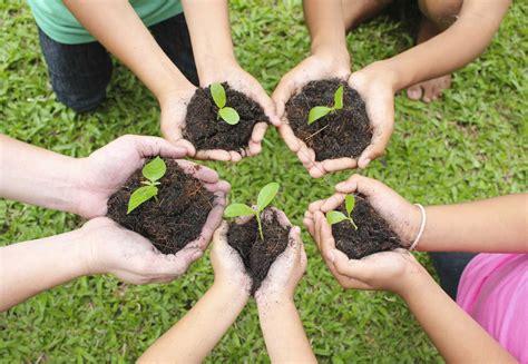imagenes sadias 191 cu 225 les son los principios y valores de la ecolog 237 a social