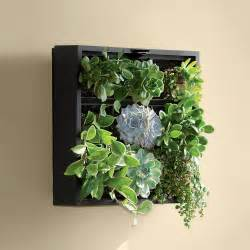 living green wall tabletop planter the green
