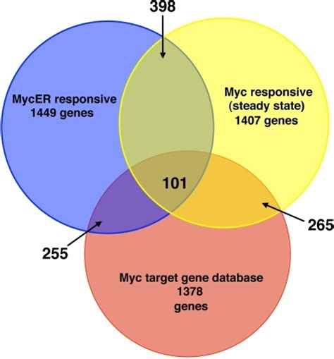 venn diagram gene venn diagram of myc responsive genes in different studi
