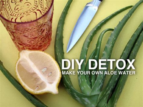 Diy Detox by Detox Water Recipes To Burn And Cleanse Your
