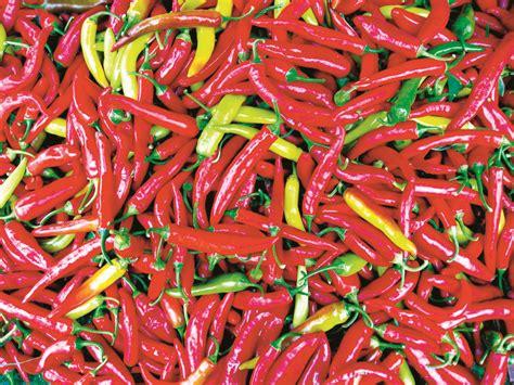 Chili Garden by Chili Garden The Westbury Times