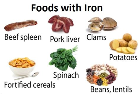 fruits n vegetables rich in iron list of iron enriched foods foodfash co