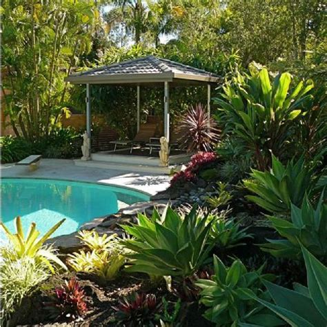 50 best tropical landscaping ideas images on pinterest balcony backyard and barbie dream house
