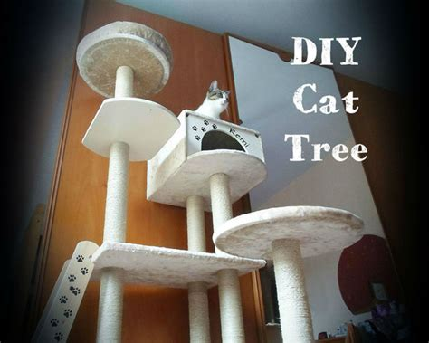 biggest house cat you can buy diy cat tree house