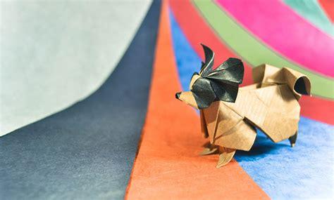 Top 10 Best Origami - les incroyables origamis d animaux de gonzalo garcia calvo