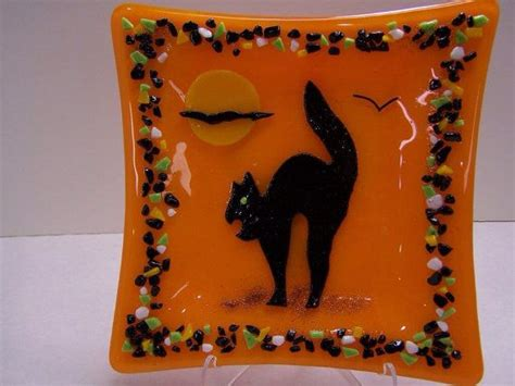 8 Scary Dishware For Your by Best 25 Scary Cat Ideas On Pictures Of Baby