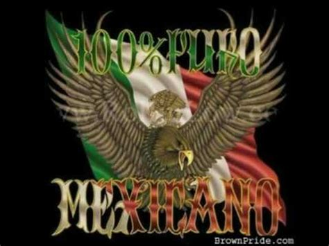imagenes perronas para tatuar chistes mexicanos perrones youtube