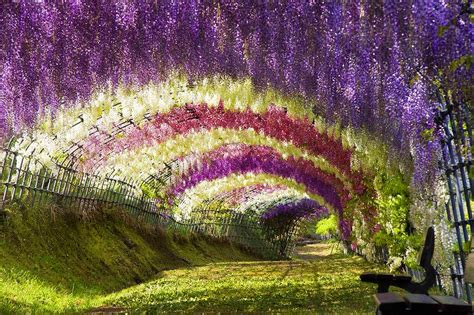 gardens of the world chidinma inspirations visit beautiful gardens of the world through pictures
