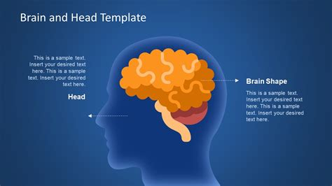 powerpoint themes brain human head and brain shape slide slidemodel