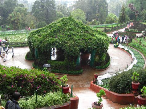 spirit  lover  india botanical garden