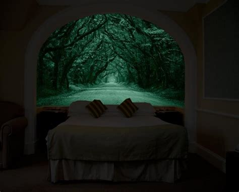 Wall Murals Diy glow in the dark wall mural that makes it look like you