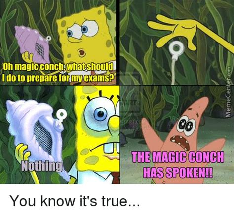 The Conch Has Spoken Meme - funny conch memes of 2017 on sizzle xdxd