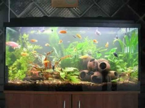 how to make fish tank decorations at home easy diy fish tank decorations youtube