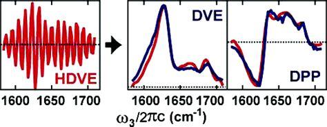 j protein chem publications ganim laboratory
