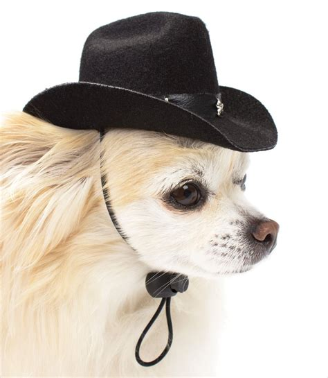 beanies for dogs cowboy hats for dogs gw