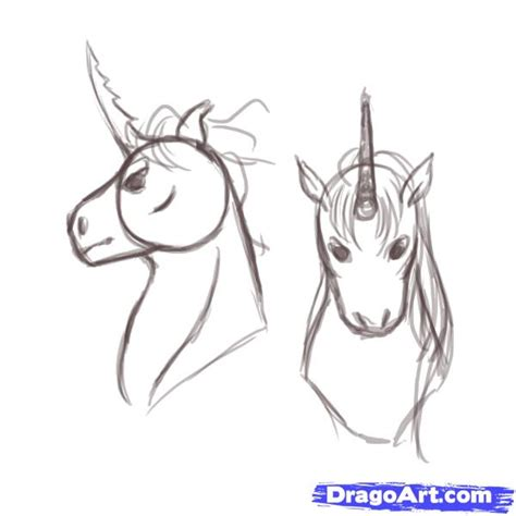 how to draw a realistic unicorn head step by step archives