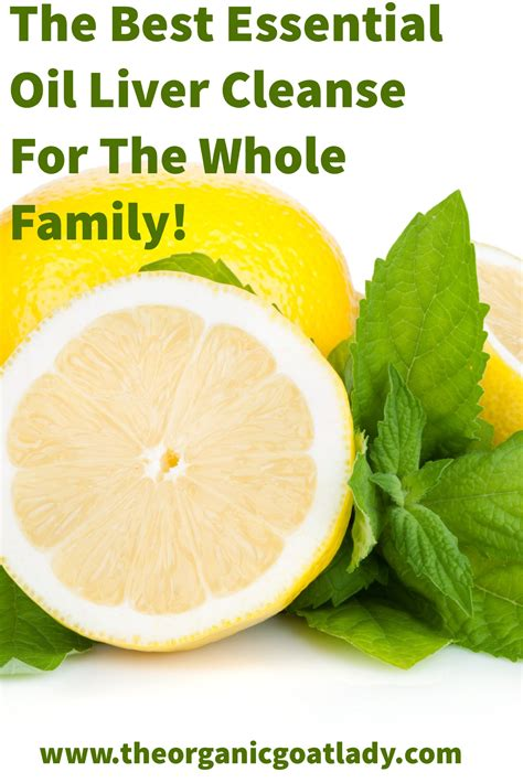 24 Hour Detox Clense For The Whole Family With Juicing by The Best Essential Liver Cleanse For The Whole Family