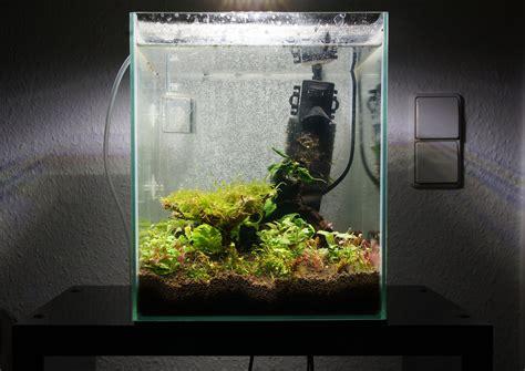 attempt  nano cube aquascape