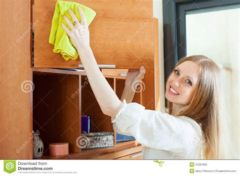 haired cleaning furniture stock photo image