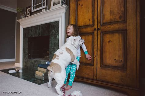 humping bed mother captures the true friendship between her young daughter and their english bulldog