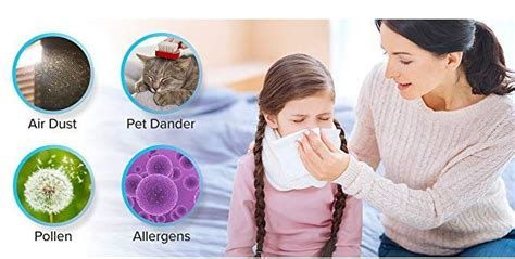 air purifier  pets  reviews newest models